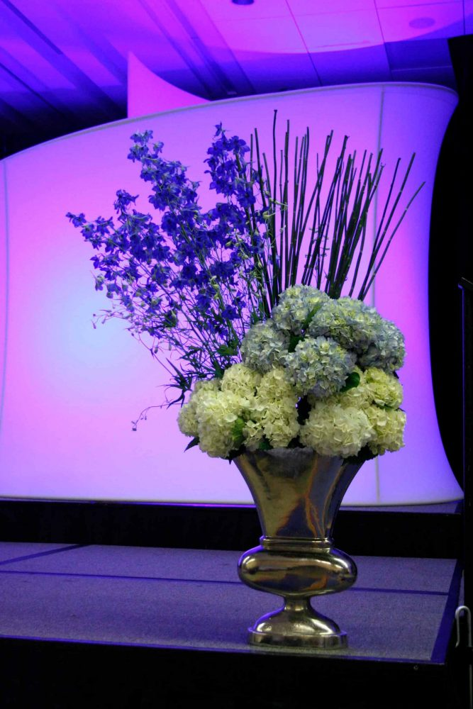 hydrangeas and tall flowers